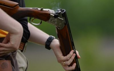 Picking The Perfect Shotgun: Everything You've Ever Wanted To Know (But Didn't Want To Ask)
